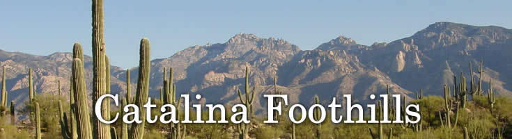 Catalina Foothills